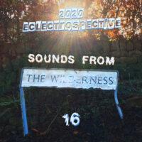 SFTW #16 – 2020 Localist Eclectrospective – 31/12/20